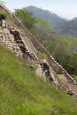 Stair up, maya ruins in jungle Mexico — Stock Photo