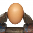 Egg is clamped in the old vice, isolated on a white background — Stock Photo