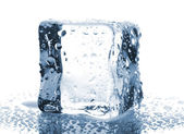 Ice cube with water drops — Foto de Stock