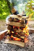 Campfire closeup — Stock Photo