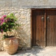Gate and flower in pot on street in Omodos village, Cyprus - Stock Photo