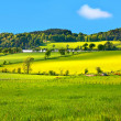 Stock Photo: Beautiful, Spring landscape