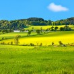 Beautiful, Spring landscape — Stock Photo