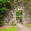 Old, stone garden wall with  metal gate — Stock Photo