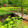 Old wooden bridge in a beautiful garden - Stock fotografie