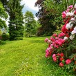 Beautiful, English garden in springtime - Stockfoto