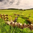 Spring rural landscape with stone wall,  Scotland - 