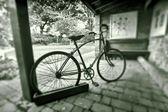 Zabytkowych rowerów w czerni i bieli — Zdjęcie stockowe