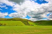 İskoç bahar yatay, tepeler ve beyaz bulutlar — Stok fotoğraf