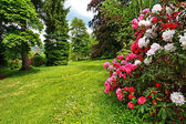 Beautiful, English garden in springtime — Stock Photo