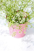 White wildflowers in a pink flowerpot — Stock Photo