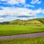 Scottish landscape with fields. — Stock Photo