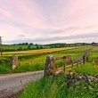 Scottish landscape with fields. — Stock Photo