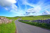 Dales yorskshire num dia lindo de suny — Fotografia Stock