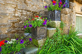Pretty flowers decoration outside an old house — Stock Photo