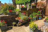 жилой сад ландшафтный дизайн — Стоковое фото