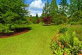 Zahrada krajinářství, srpingtime — Stock fotografie