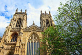 York Minster, gothic cathedral in York — Stock Photo