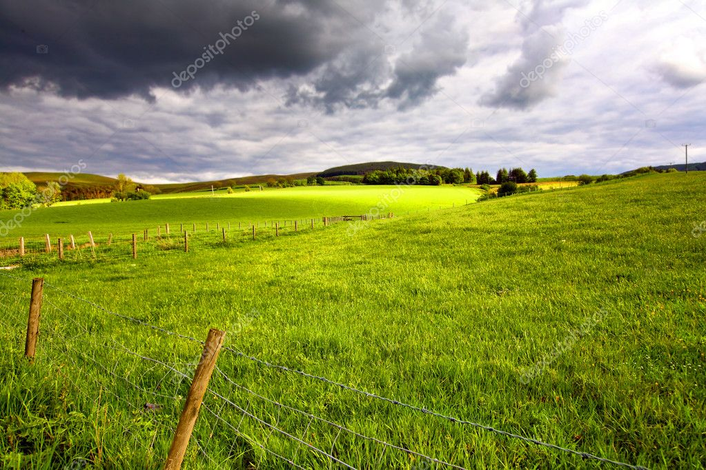 Scottish landscape with fields and hills on Spring afternoon  Stock Photo #11377034