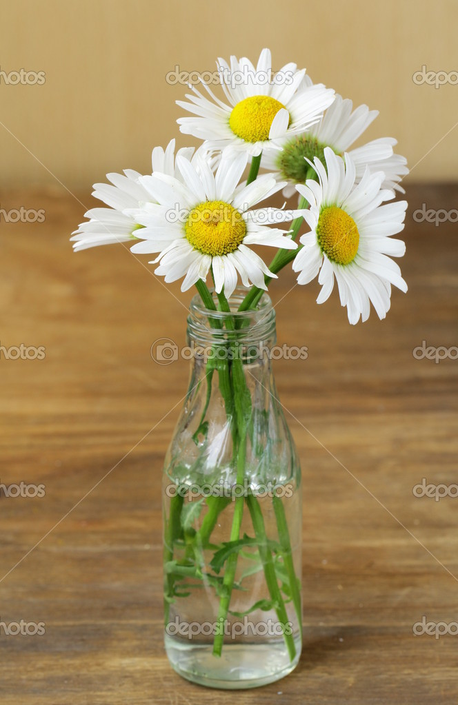 Fresh daisy chamomile flowers  on wooden background — Stock Photo #11068087