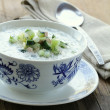 Cold vegetable soup, traditional Russian cuisine — Stock Photo