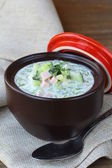 Cold vegetable soup, traditional Russian cuisine — Stock fotografie