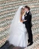 Beautiful pair of newlyweds — Stock Photo