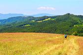 Carpathians — Stock Photo