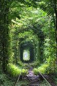 Aşk tüneli — Stok fotoğraf