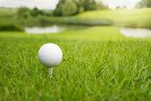 Golf ball op de cursus — Stockfoto