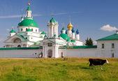 Mucca va passato il monastero spaso-yakovlevsky in rostov — Foto Stock