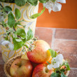 Beautiful ripe apples and branches of a blossoming apple-tree in — Stock Photo