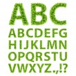 Green Leaves font — Stock Vector