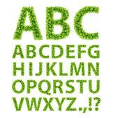 Zielone liście czcionek — Wektor stockowy