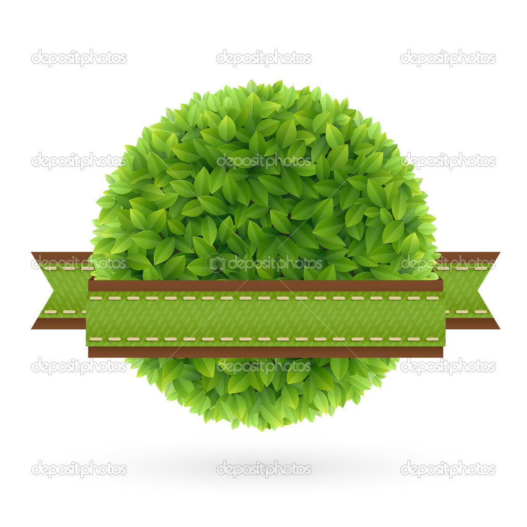 Eco Friendly label. Green leaves. Vector illustration.  Stock Vector #12028430