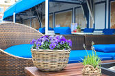 Flowers on the table at the European outdoor cafes. — Stock Photo