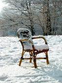 Silla de mimbre en un prado cubierto de nieve. países bajos — Foto de Stock