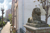 A statue of a lion near a house in Gorinchem. Netherlands — Stock Photo