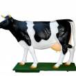 Full-size dummy of cow breed Dutch — Stock Photo #11401781