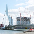 Erasmus Bridge in Rotterdam. Netherlands - Stock Photo