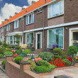 Small garden in front of the Dutch house. Netherlands — Stock Photo