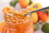 Gourmet apricot jam — Stock Photo