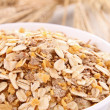 Oat flakes — Stock Photo #11318096