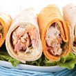 Sandwich wrap — Stock Photo #11318235