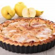 Gourmet applpie — Stock Photo #12015373