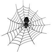 Spider in a Cobweb — Stock Vector