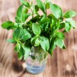 Stock Photo: Mint leaves in glass
