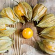 Royalty-Free Stock Photo: Physalis