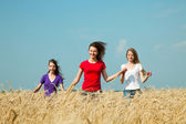 Genç kızlar buğday alan çalışan — Stok fotoğraf
