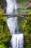 Multnomah falls and bridge in the morning sun light — Stock Photo